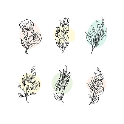 Floral Decoration Branch Leaf Plant Line Stroke Icon Pictogram Symbol Set Collection. Hand drawn Logo doodle Vector Illustration