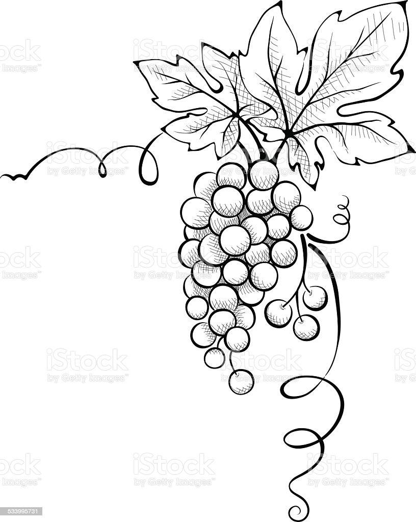 Floral decoration - Corner vector art illustration