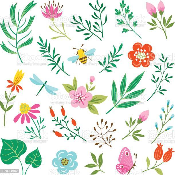 Floral design elements and insects vector id670968048?b=1&k=6&m=670968048&s=612x612&h=id 5 msmyz h85e5j9fmgzpy3uxx2vmfx2zsfv8tlpk=