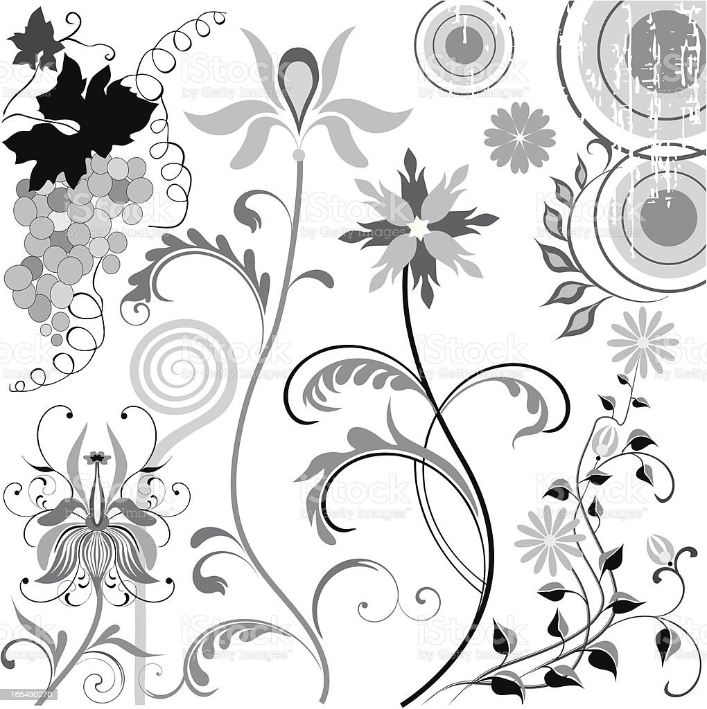Floral Design elements set royalty-free stock vector art