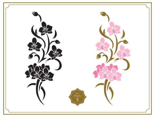 Floral design elements, stencil. Original decoration with branches of exotic tropical flowers. Fine decor with orchids flowers. Floral design elements, stencil. Original decoration with branches of exotic tropical flowers. Fine decor with orchids flowers. orchid stock illustrations