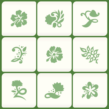 Floral design elements (Vector)
