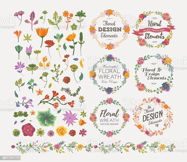 Floral design elements vector id637731772?b=1&k=6&m=637731772&s=612x612&h=93vx3y2akhflaoftybpdedeyn9mcycg82gunxhbq73m=
