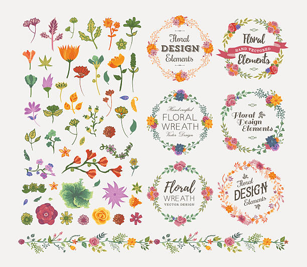 Floral Design Elements​​vectorkunst illustratie
