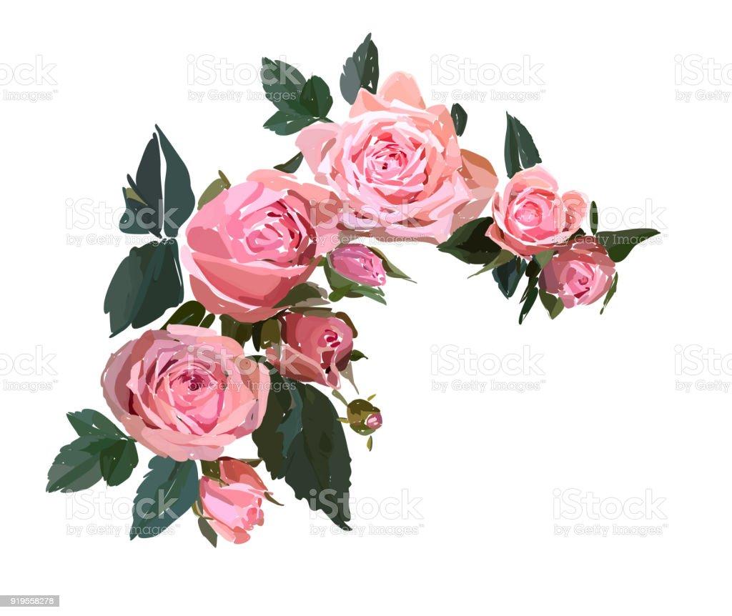 Illustration De Design Floral Jardin Fleur Rose Rose Isole Sur Fond