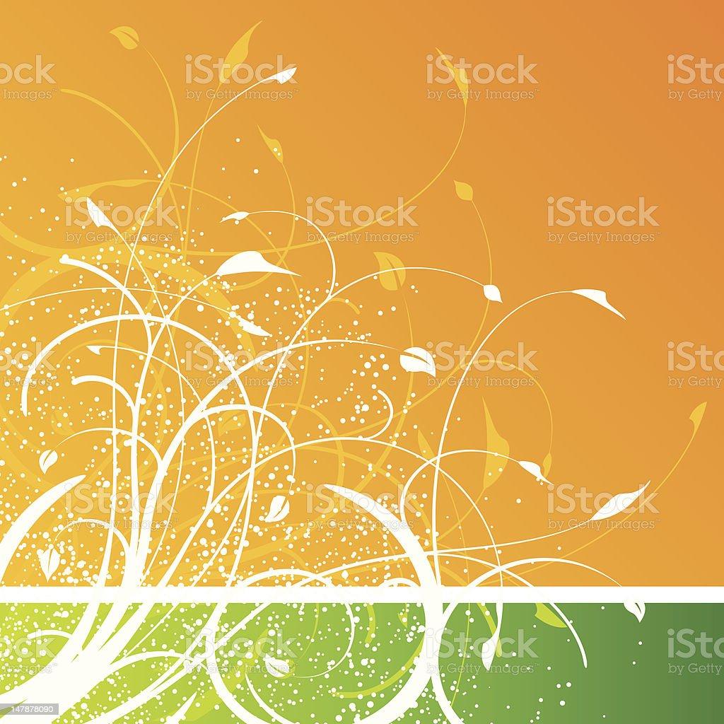 Motivo Floreale Su Sfondo Arancione E Verde Immagini Vettoriali