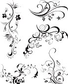 Decorative floral elements in black and white