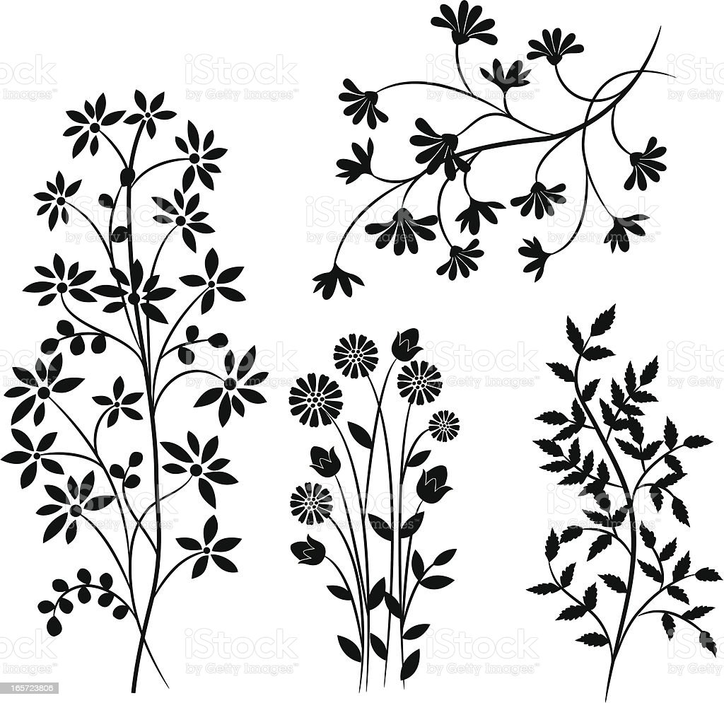 Floral  elements . royalty-free stock vector art
