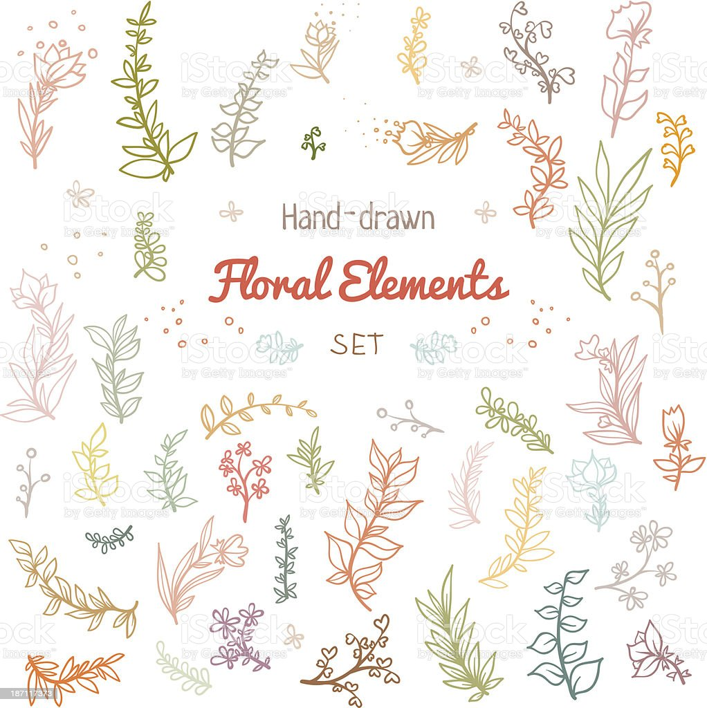 Floral elements with branches leaves and flowers vector art illustration