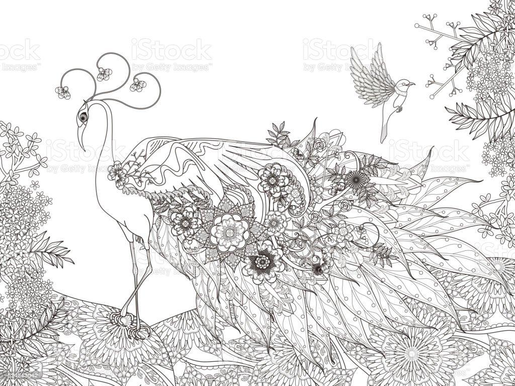 Flores Página Para Colorear De Plumas De Pavo Real - Arte vectorial ...