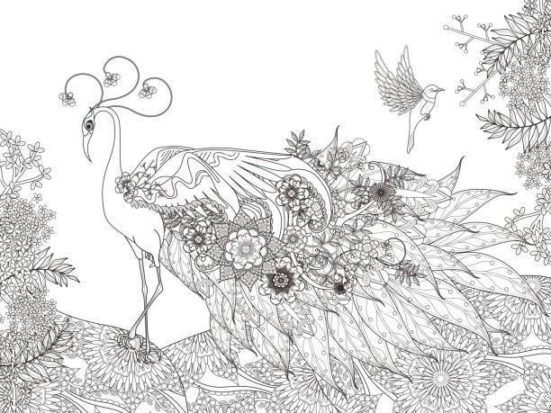 floral feather peacock coloring page vector art illustration