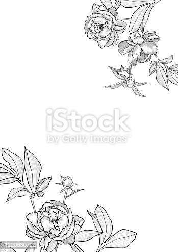 Floral card frame. Botanical wreath isolated on white. Vector tattoo peonies with leaves. Detailed outline sketch drawing. Line art flowers for placing text, postcard, invitation, poster.