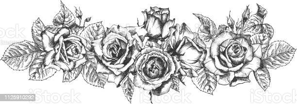 Floral frame hand drawn sketch of roses leaves and branches detailed vector id1125910292?b=1&k=6&m=1125910292&s=612x612&h=8ynuwcxwcqkryopig o8c4q4zwpf98gjt3cenxgj93o=