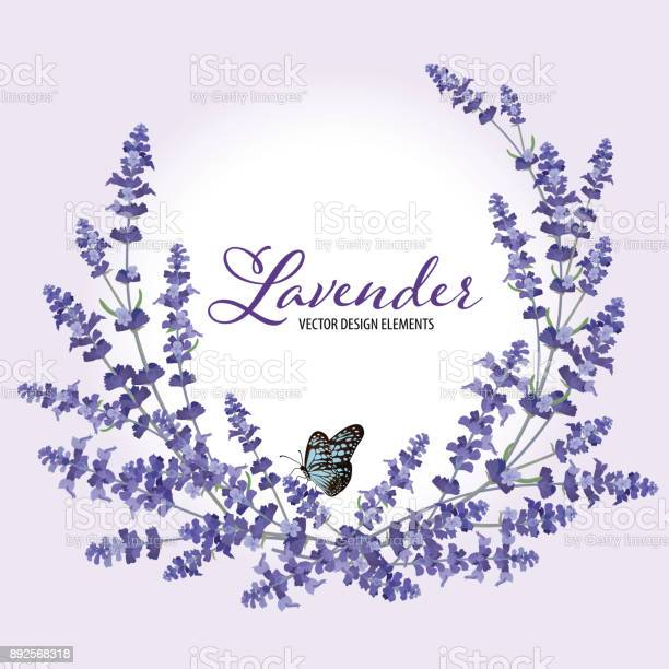 Floral frame with autumn lavender flowers with butterfly on violet vector id892568318?b=1&k=6&m=892568318&s=612x612&h=vhofkj6ncf 9fvz2mbr9s tkrj95wqzn0jboteu6rhe=