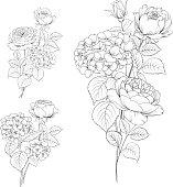 Floral garland of roses.