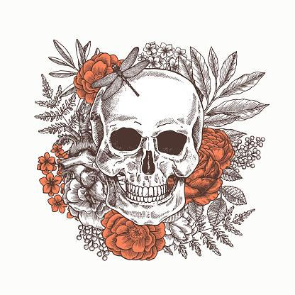 Floral human skull. Tattoo anatomy vintage illustration. Vector illustration