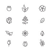Floral icon set. Flowers and leaves line art icons