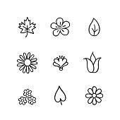Floral icon set. Flowers and leaves. Nature line art icons