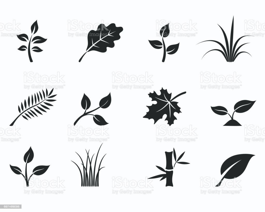 floral icon set vector art illustration