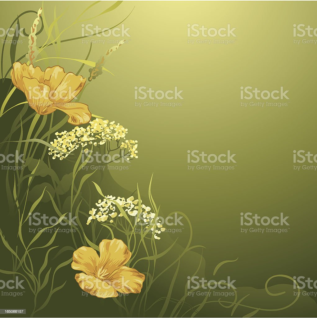 Floral illustration royalty-free floral illustration stock vector art & more images of backgrounds