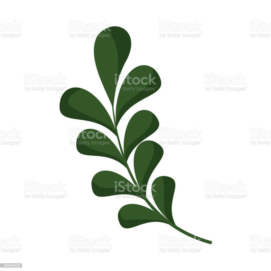 floral leaves ornament vector illustration graphic stock illustration download image now istock https www istockphoto com vector floral leaves ornament vector illustration graphic gm908935928 250362650