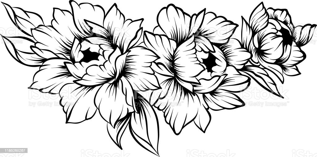 Floral Line Art Border On A White Background Coloring Page Stock Illustration Download Image Now Istock