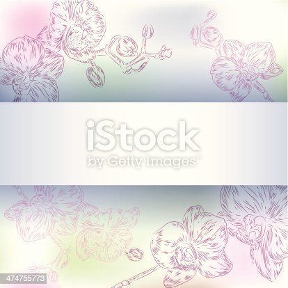 Vector floral orchid background