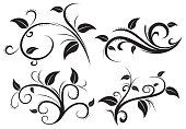 illustration of Floral ornament element collection
