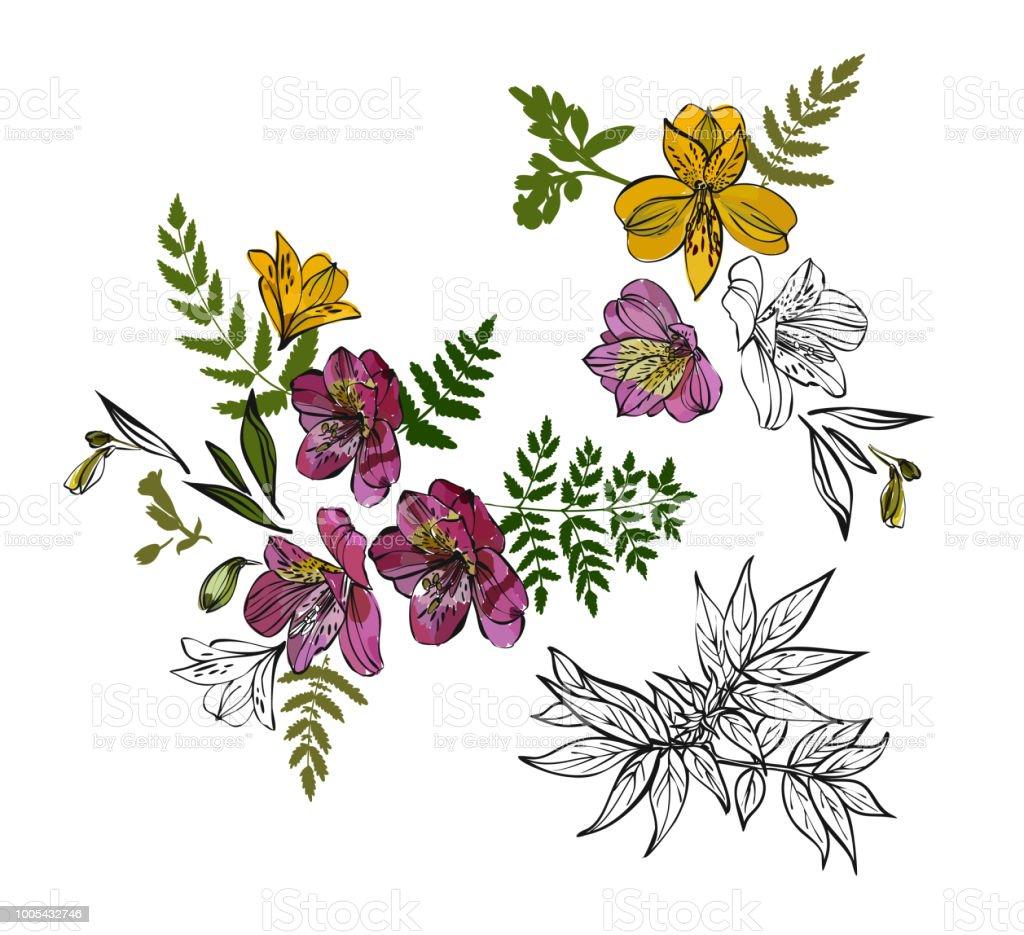 Ilustracion De Patron Floral Con Flores Tropicales Y Hojas Dibujado