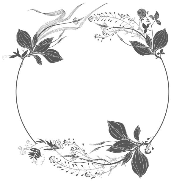Floral round frame with wildflowers, herbs and space for text. Vector illustration on white. Invitation, greeting card or an element for your design. Silhouette. Vector illustration with wildflowers and herbs, design element on white. Invitation, greeting card. shepherd's purse stock illustrations