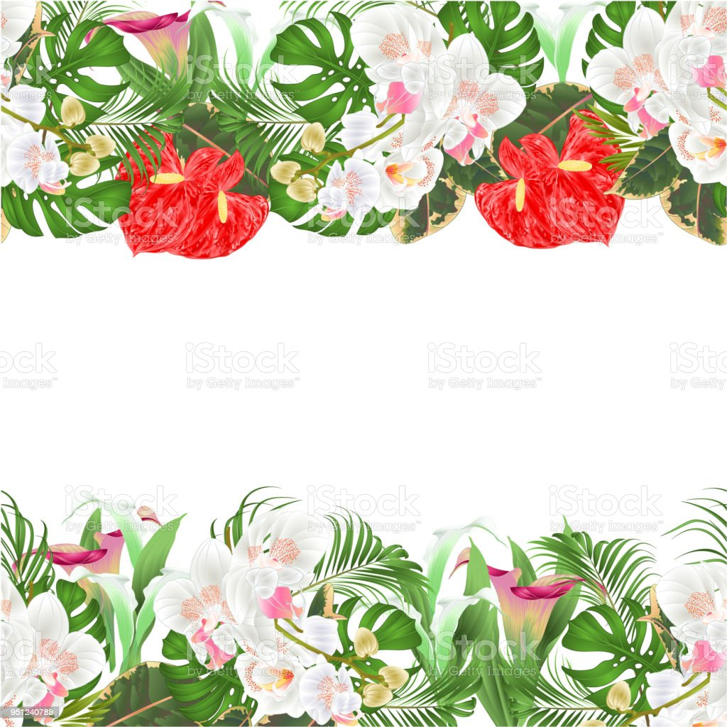Floral Seamless Background Bouquet With Tropical Flowers Floral