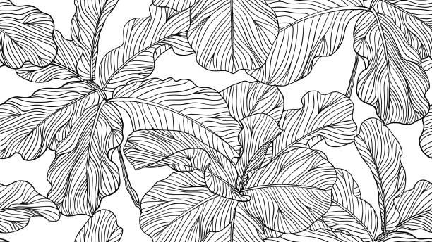 흰색 배경, 라인 아트 잉크 그리기에 꽃 완벽 한 패턴, 흑인과 백인 바이올린 잎 그림 - 자연 실루엣 stock illustrations
