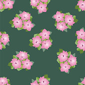 Floral seamless pattern of petunia posy - Illustration