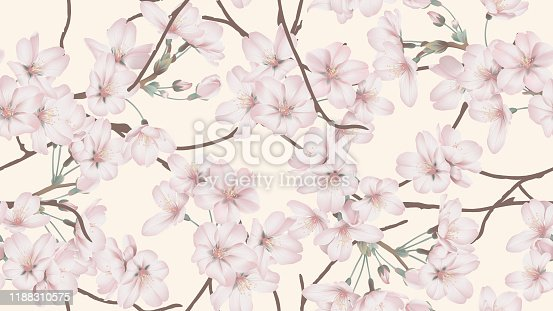 Floral seamless pattern, Somei Yoshino sakura flowers with branch on light orange