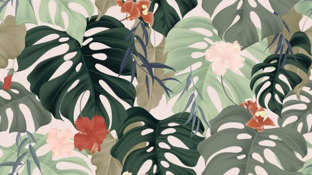 Patrón transparente floral, plantas tropicales, planta de filodendro de hojas divididas, flores de hibisco, hojas de sauce llorón y flores de buganvilla en la luz rosa de fondo, pastel temática vintage - ilustración de arte vectorial