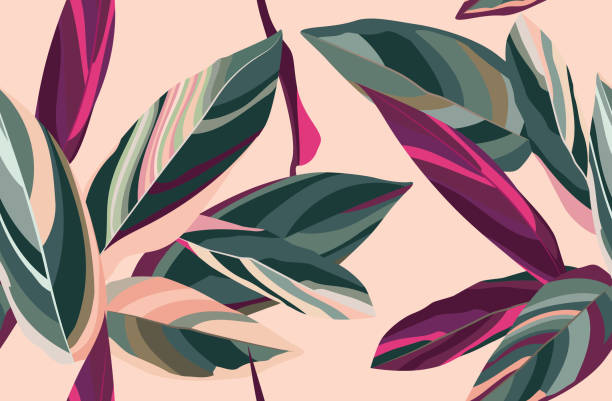 Floral seamless pattern. Leaves of Cordelia on a pink background. tropical pattern stock illustrations