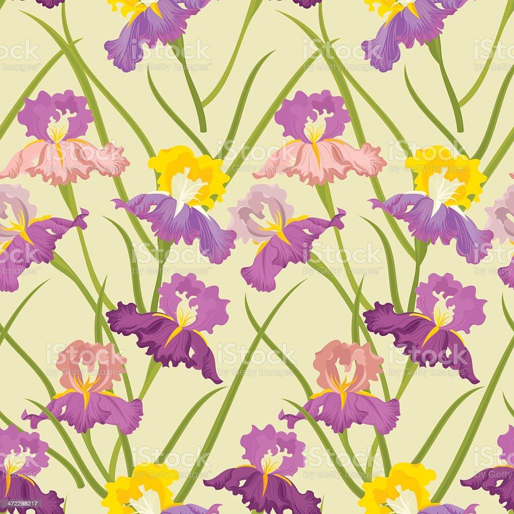 Floral Seamless Pattern (Iris) royalty-free stock vector art