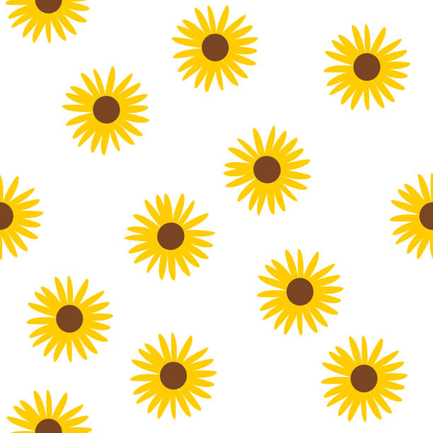floral seamless pattern vector, sunflowers - sunflower stock illustrations