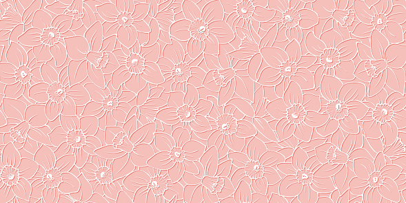 Floral seamless pattern: white outline daffodils, pink background. Narcissus flowers, cut out effect. Delicate spring vector print