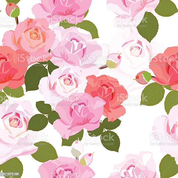 Floral seamless pattern with beautiful roses vector vector id521975188?b=1&k=6&m=521975188&s=612x612&h=4hwzyboufivqzqiw9tcnx6itolr ge1uzsukfohuzec=