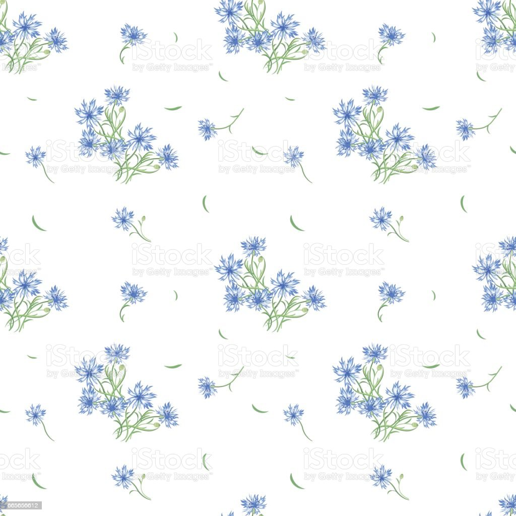 Floral seamless pattern with cornflower flowers and leaves vector art illustration
