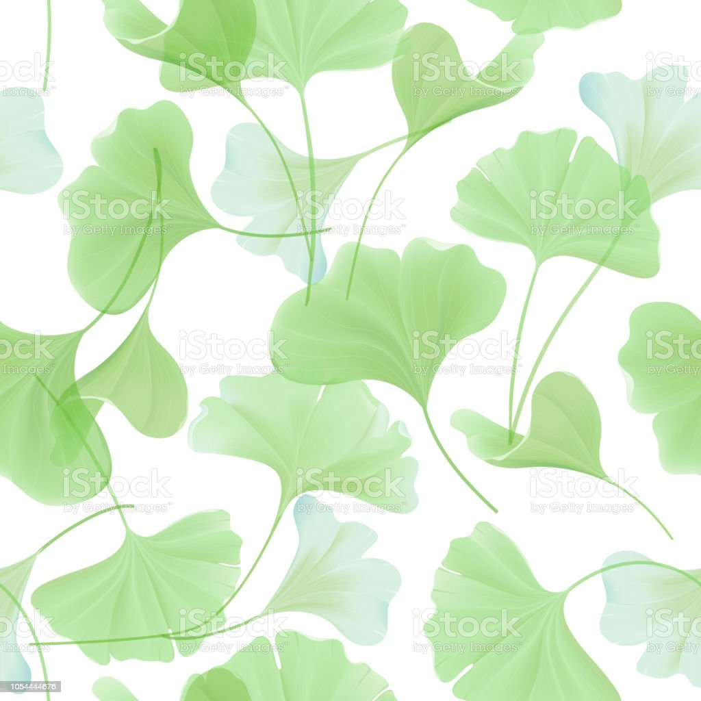 Pastel Groen Behang.Naadloze Bloemmotief Met Japanse Gingko Biloba Verlaat Vintage