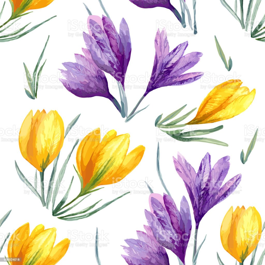Floral seamless vector background with violet yellow crocus flower on white