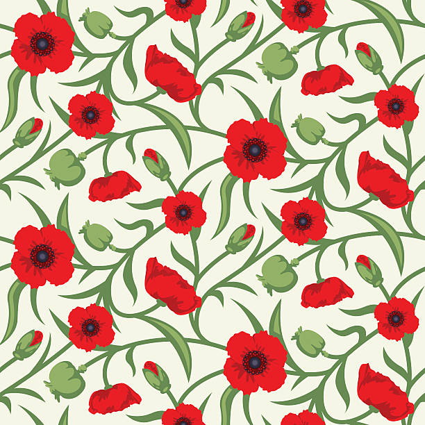 Floral Seamless Vector Pattern Design Red Poppy vector art illustration