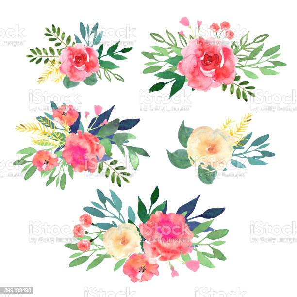 Floral set collection with flowers drawing watercolor design vector id899183498?b=1&k=6&m=899183498&s=612x612&h=r4cdfq0hazgk0gbnfedzxbzq42pa92hyyqsbdsz12ta=