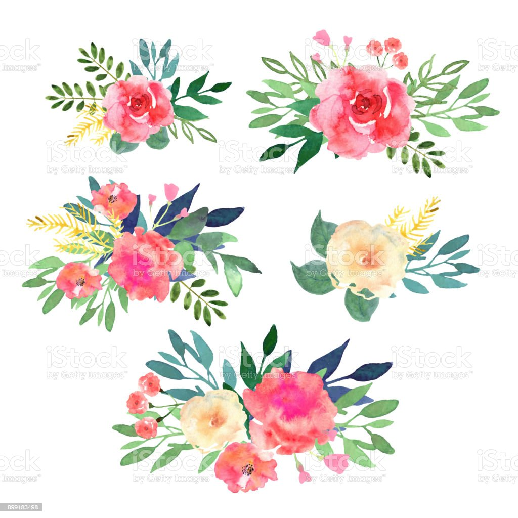 Floral set. Collection with flowers, drawing watercolor. Design vector art illustration