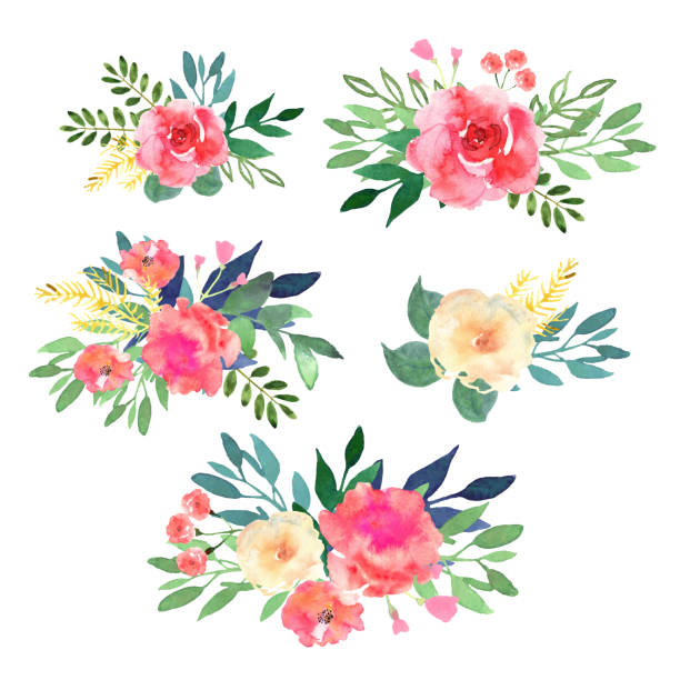 floral set. collection with flowers, drawing watercolor. design - flowers stock illustrations, clip art, cartoons, & icons