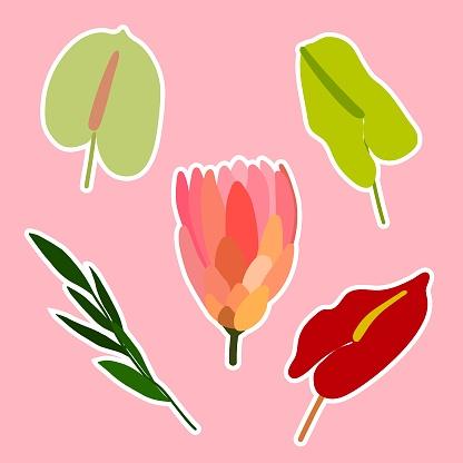 Floral spring, summer sticker vector set