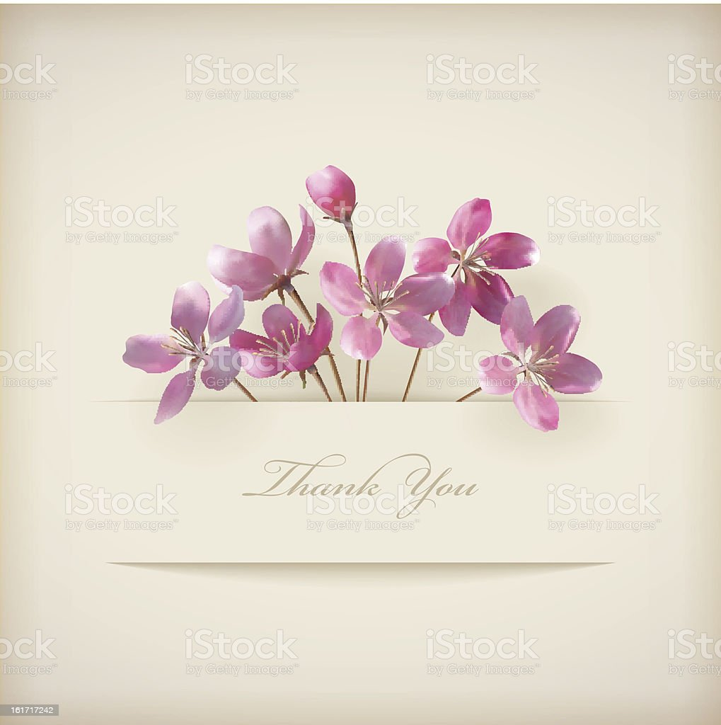 Floral \'Thank you\' card with beautiful realistic spring pink flowers...