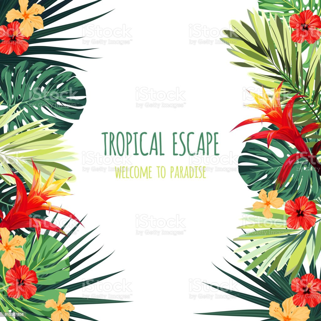 Floral square postcard design with guzmania and hibiscus flowers, monstera and royal palm leaves. Exotic hawaiian vector background vector art illustration